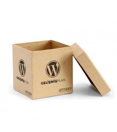 WordPress Gelişmiş Plan