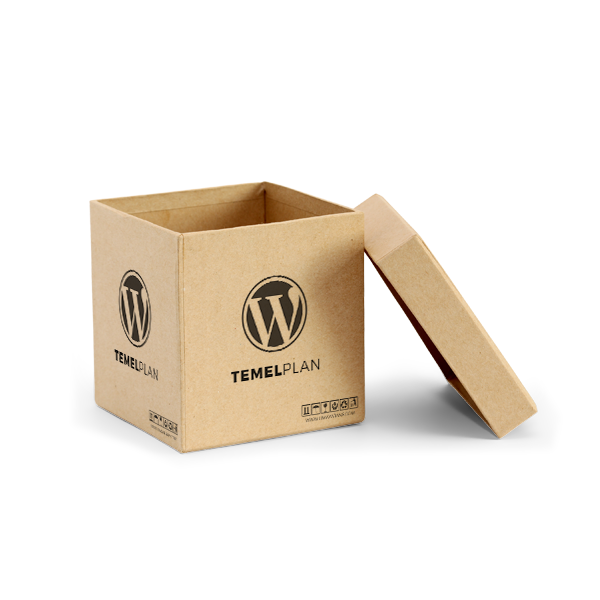 WordPress Temel Plan